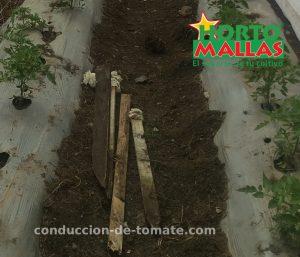 instalacion-de-estacas-hortomallas-para-el-soporte-y-tutoramineto-de-cultivos